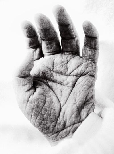 Von Menschen, Tieren und Händen