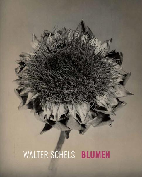 Walter Schels. Blumen | Magazin